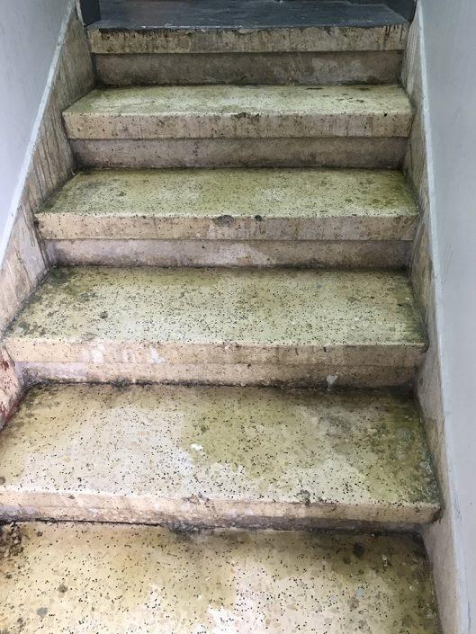 מדרגות לפני השיפוץ